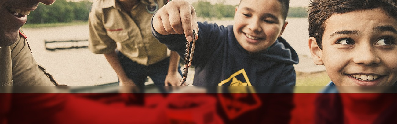 8 Ideas for an Easy Webelos to Scouts BSA Transition